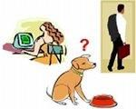Cachorro com dois donos morre de fome!